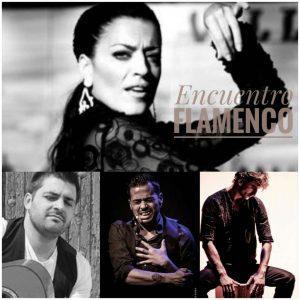 Encuentro Flamenco photo