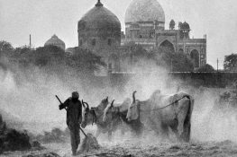 """""""Delhi that was"""" photographic archives"""